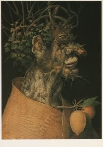G. Arcimboldo 1526/30-1593 -Arcimbaldo/A.U./ The winter- Postkaart