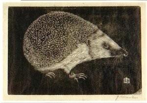 Jan Mankes (1889-1920) -Egel- Postkaart