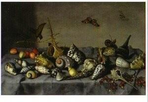 Balthasar v. d. Ast (1593-1657-Stilleven met schelpen bvb- Postkaart