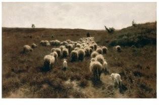 Anton Mauve (1838-1888) -De terugkeer van de kudde, Laren 1886-87- Postkaart
