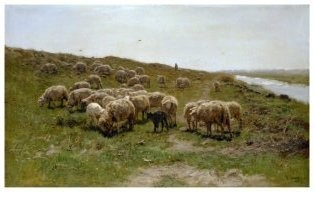 Anton Mauve (1838-1888) -Schapen langs een dijk, ca. 1870- Postkaart