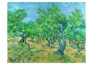 Vincent van Gogh (1853-1890) -Olijfgaard / Olive-grove, 1889- Postkaart