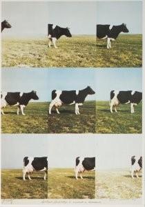 Jan Cremer (1940) -Hollands landschap.- Postkaart