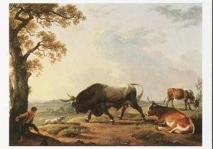 Hendrik Voogd (1768-1839) -Stier + hond- Postkaart