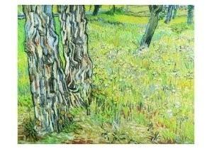 Vincent van Gogh (1853-1890) -Gras en bloemen- Postkaart