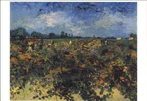 Vincent van Gogh (1853-1890) -Wijngaard- Postkaart