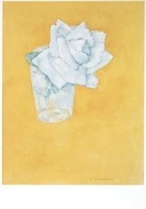 Piet Mondriaan (1872-1944) -Witte roos in glas- Postkaart