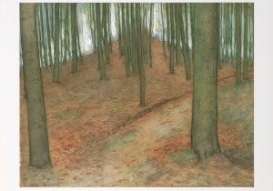 Mondriaan (1872-1944)Mondrian -Boslandschap, 1898-1900- Postkaart
