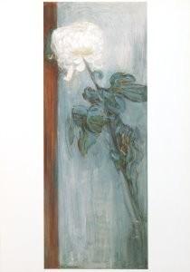 Piet Mondriaan (1872-1944) -Chrysant- Postkaart