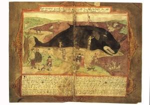 Adriaen Coenen (1514-1587) -Vis booc- Postkaart