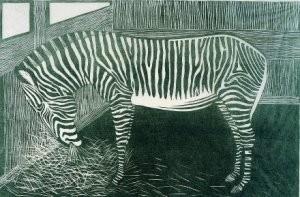 S.Jessurun de Mesquita(1868-19-Zebra- Postkaart