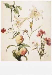 H.Ellens -Studie van bloemen en fruit, ca. 1891- Postkaart