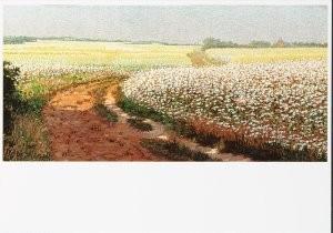 Co Breman (1865-1938) -Namiddag, 1903- Postkaart