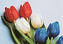 Tim Killiam (1947-2014) -National Flower- Postkaart