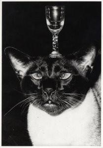 Frits Lemaire (1921-2005) -Glaasje op- Postkaart