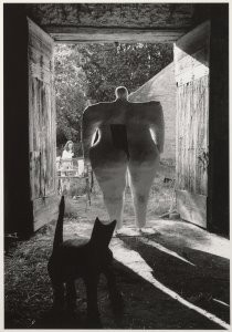 Anoniem -Niki de Saint Phalle, 1967- Postkaart