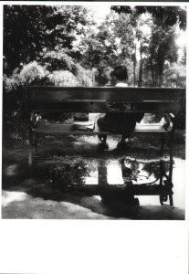 Eva Besnyo  (1910-2003) -In het park, Boedapest- Postkaart