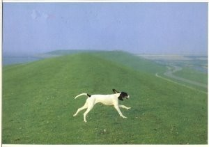 Martin Kers (1944) -Ein Berner Lauf in Fries- Postkaart