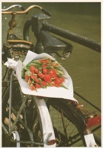 Tjalf Sparnaay (1954) -Tulpen uit Amsterdam- Postkaart