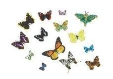 Marlies Heere (1967) -Butterflies, 2002- Postkaart