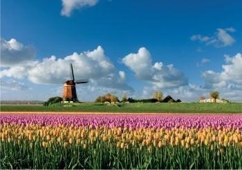 Jaap Hart -Lente in Holland- Postkaart