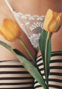 Peter Dicampos (1936-2000) -P.Dicampos/Tanga Tulips.- Postkaart