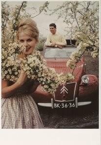 Citroen -Lente-Citroen- Postkaart
