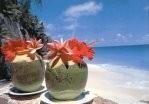 Thomas Haltner -Coconut drinks on the Seychelles- Postkaart