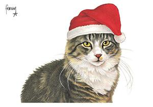 Francien van Westering (1951) -Max als kerstman- Postkaart