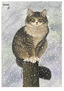 Francien van Westering (1951) -Max in sneeuw- Postkaart