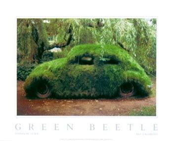 Stanislav Tuma (1950-2005) -Green Beetle- Poster