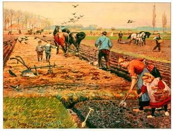 Cornelis Jetses (1873-1955) -Lente op akker- Poster