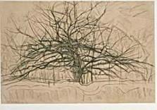Mondriaan (1872-1944)Mondrian -Boom II- Dubbele Kaart