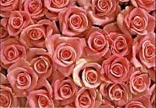 Paul Huf (1924-2002) -Flowerpower no.20- Dubbele Kaart