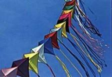 Pieter van Schelt -Flight- Dubbele Kaart