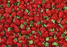 Letizia Volpi -Strawberries- Dubbele Kaart