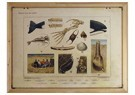 René Jacobs (1969)  -  Aan het strand, 2013 - Postkaart -  1A00009-1