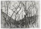 Piet Mondriaan (1872-1944)  -  Studie van bomen, 1905 - Postkaart -  1A00103-1