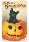 Anonymus  -  Zwarte kat zittend in een pompoen (A merry Halloween) - Postkaart -  1C1178-1
