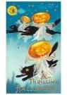A.N.B.  -  A thrilling Halloween - Postkaart -  1C1233-1
