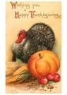 Anonymus  -  Wishing you a happy thanksgiving - Postkaart -  1C1344-1
