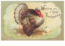 A.N.B.  -  Wishing you a happy thanksgiving - Postkaart -  1C1629-1