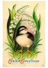 Anonymus  -  Easter greetings - Postkaart -  1C2081-1