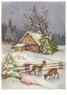 Anonymus  -  Sneeuwlandschap - Postkaart -  1C2136-1