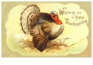A.N.B.  -  Wishing you a happy thanksgiving - Postkaart -  1C2140-1