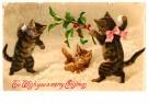A.N.B.  -  3 katjes spelend in de sneeuw (merry christmas) - Postkaart -  1C2193-1