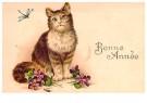 A.N.B.  -  Kat met bloemen (gelukkig nieuwjaar) - Postkaart -  1C2207-1