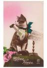 Anonymus  -  Kat met een gitaar (gelukkig nieuwjaar) - Postkaart -  1C2209-1