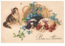 Anonymus  -  Kat met twee honden (gelukkig nieuwjaar) - Postkaart -  1C2210-1