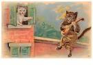 Anonymus  -  Een kat speelt muziek - Postkaart -  1C2236-1